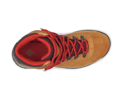 Bota Newton Ridge Plus Amped WP - Columbia